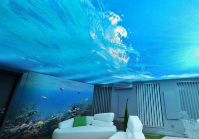 plafond-tendu2